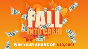 Fall Into Cash