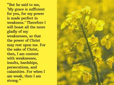 2 Corinthians 12:9-10