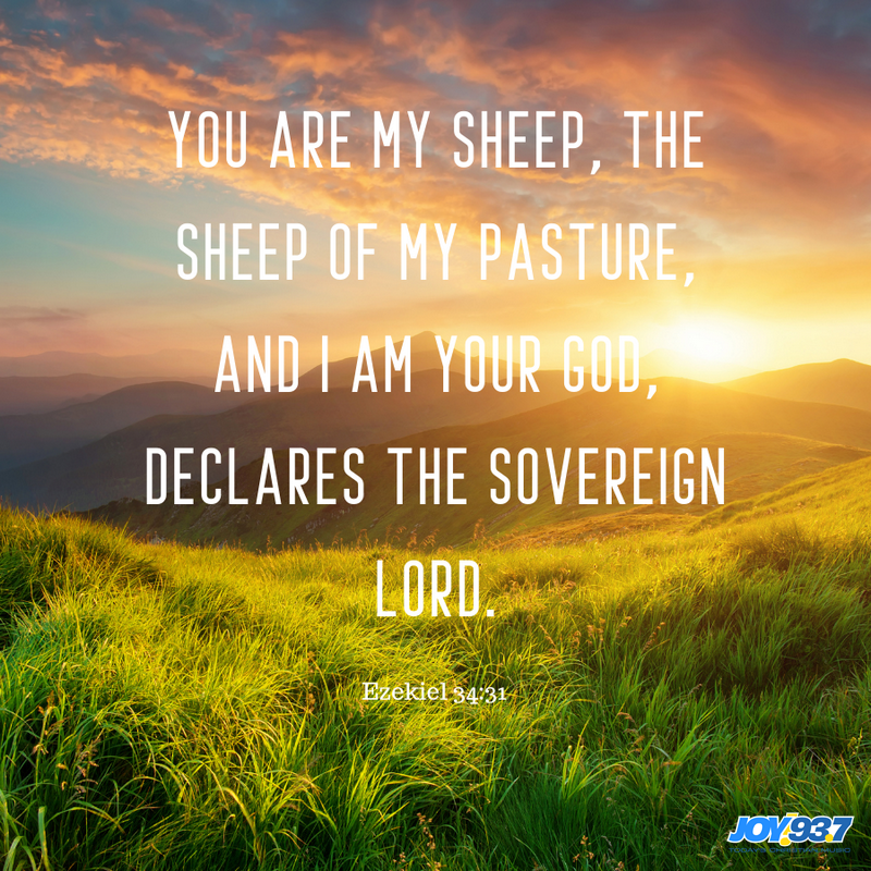 Ezekiel 34:31